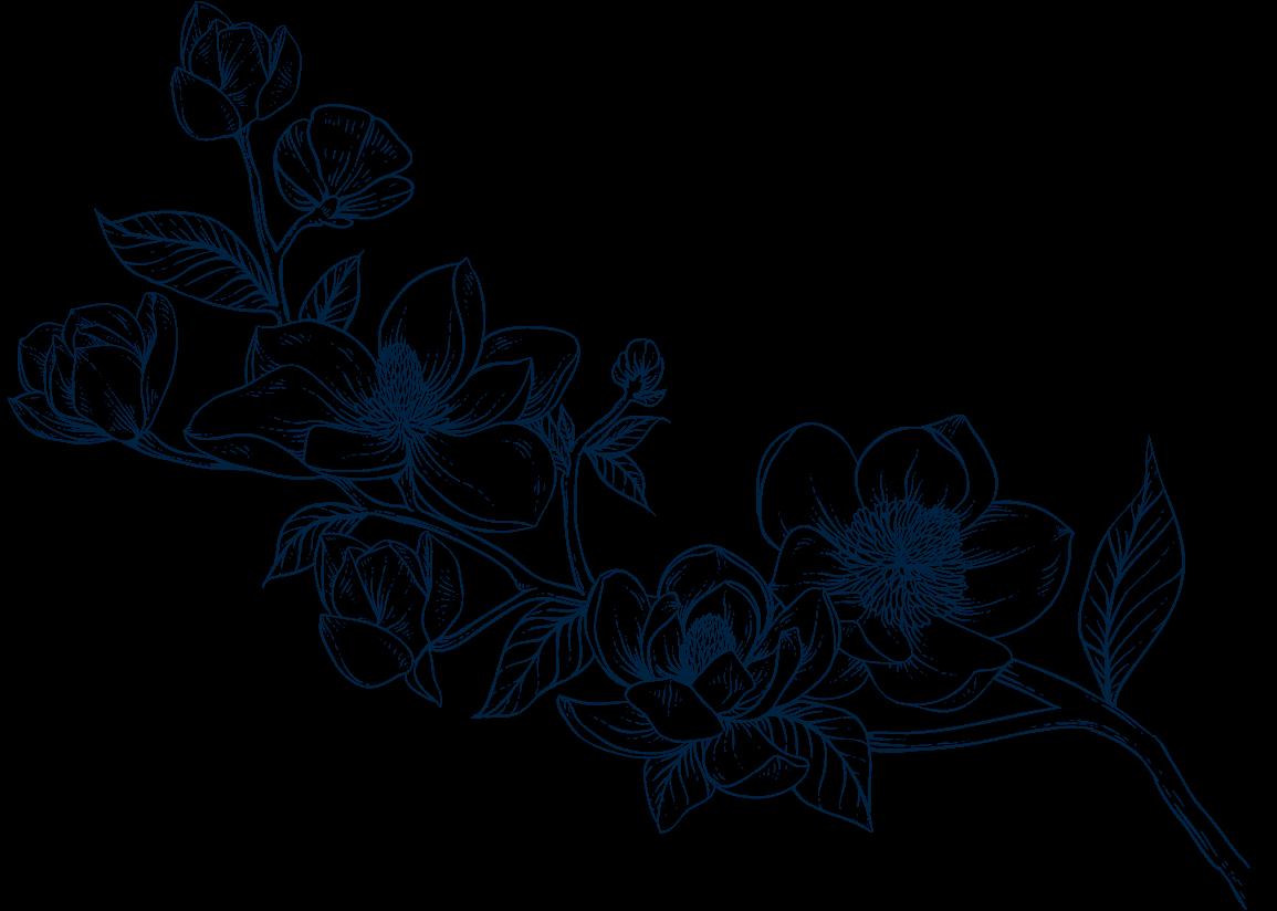 Flowers background image